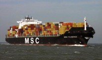 MSC-Flaminia
